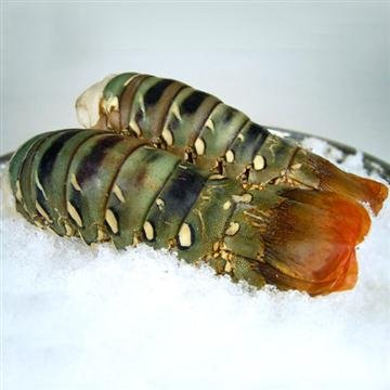 2 SPINY Lobster Tail by Giovannis Fish Market