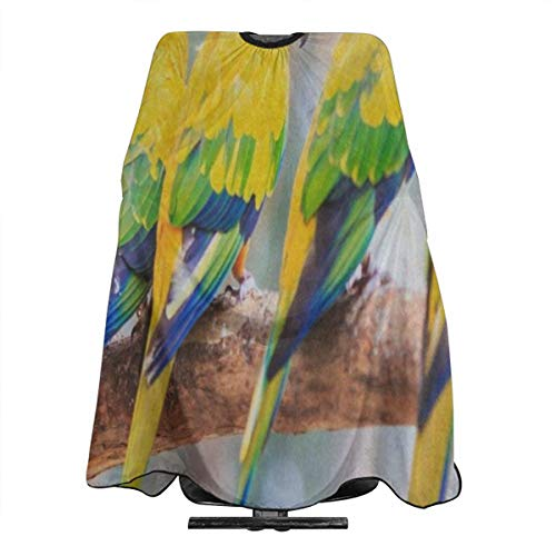 Hipster Conure Parrot Bird Salon Hair Cutting Cape Cloth Hot Haircut Tool For Profession Barbershop