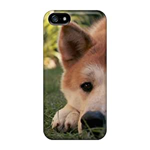 Durable Hachiko Back Case/cover For Iphone 5/5s