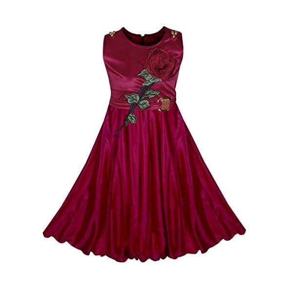BENKILS Cute Fashion Baby Girl's Lycra Frock Dress for