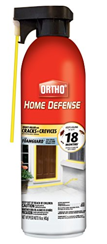 Ortho 205408 16Oz Crk and Crev Ins Killer, 16 oz (Best Home Perimeter Bug Spray)