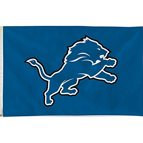 Rico Industries NFL Detroit Lions Single Sided Banner Flag with Grommets, Blue, 3' x 5' ()
