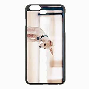 iPhone 6 Plus Black Hardshell Case 5.5inch - dog puppy small Desin Images Protector Back Cover