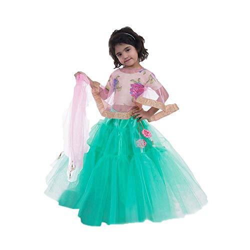- Firststepp Lehenga, lehanga for Girls, Lehenga Saree, Lehenga, Lehnga Choli for Girls, lehangas. Pink