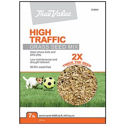 Barenbrug USA TVHT7 TV 7 lb Hi Traffic Seed : Garden & Outdoor