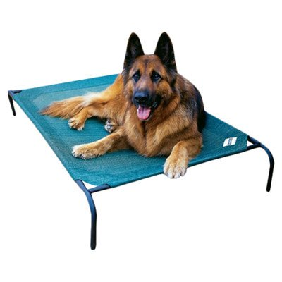 Coolaroo Elevated Pet Bed - Elevated Indoor/Outdoor Pet Cot for Large Breeds Color: Brunswick Green by Coolaroo