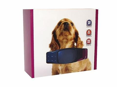 Realtime GSM GPS Dog/Cat Pet Tracking System Waterproof Collar Tracker from ElectroFlip
