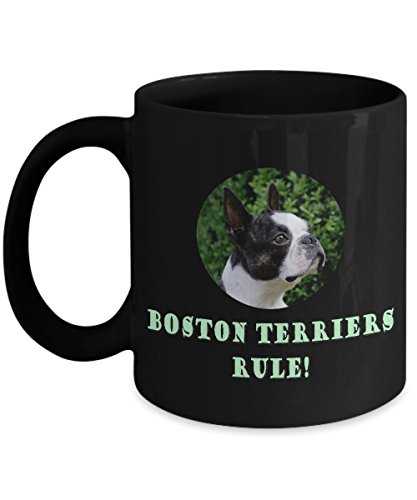 Boston Terriers Rule! Ceramic Coffee Mug