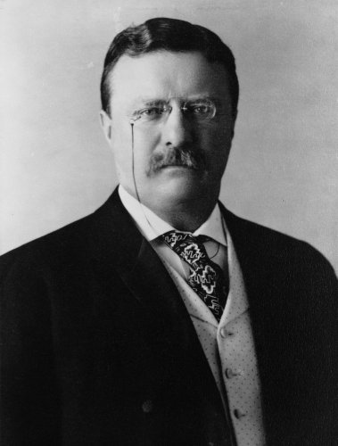 President Theodore Teddy Roosevelt US Politician Photos 8x10