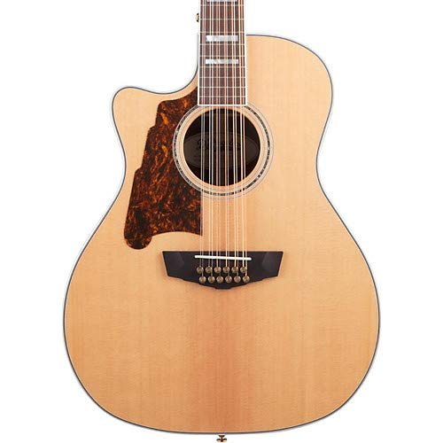 Excel Fulton Left Handed 12-String Acoustic-Electric Guitar - Left Handed 12 String