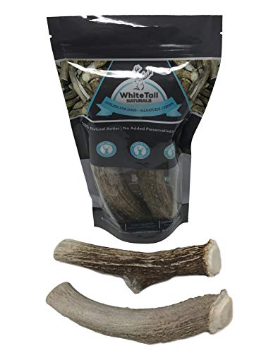 Cheap WhiteTail Naturals Premium Extra Large Deer Antlers for Dogs – (2 Pack X Large) – All Natural Dog Chews – 7 to 8 Inch Long – Extra Large Antler Bully Chew