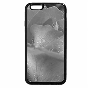 iPhone 6S Plus Case, iPhone 6 Plus Case (Black & White) - A brightly beautiful rose