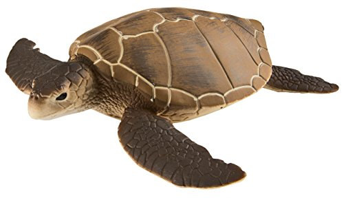 Safari Ltd. Green Sea Turtle - Realistic Hand Painted Toy Figurine Model - Quality Construction from Phthalate, Lead and BPA Free Materials - For Ages 3 and Up