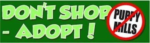 (Don't shop - adopt (No puppy mills) Fun BUMPER STICKER! STI-0054)