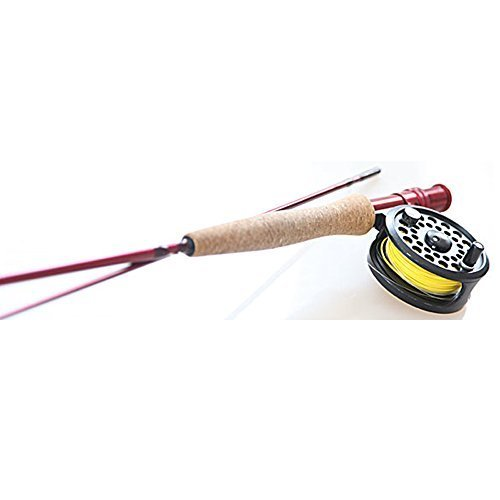 Temple Fly Rod Tfo 2pc 5wt By Fork Launcher Bug 7'0