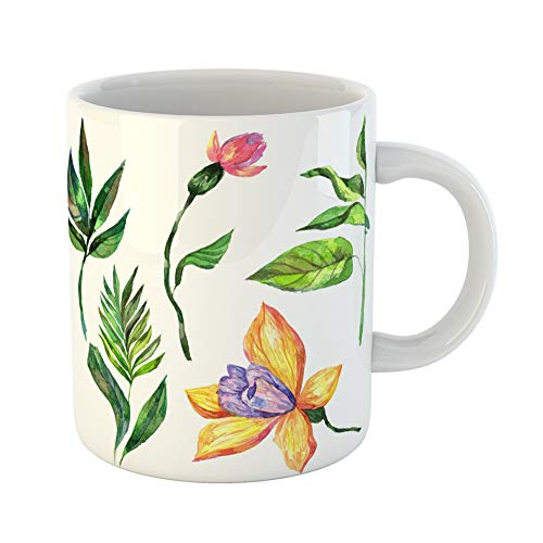 Emvency Coffee Tea Mug Gift 11 Ounces Funny Ceramic Wildflower Orchid Flower in Watercolor Full Name of the Plant Aquarelle Wild Gifts For Family Friends Coworkers Boss Mug