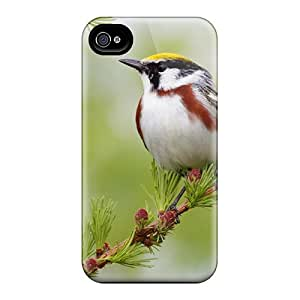 DeannaTodd Design High Quality Sweet Bird In Forest Covers Cases With Excellent Style For Iphone 6