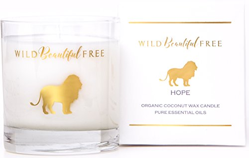 Citrus and Floral Organic Aromatherapy Candle with Pure Essential Oils for Energy and Motivation - Hope Lion Luxury Candle by Wild Beautiful Free