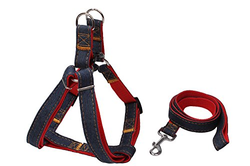 Adjustable Small Dog Collar Leash Harness for Walking Running Training DH001 (Small)