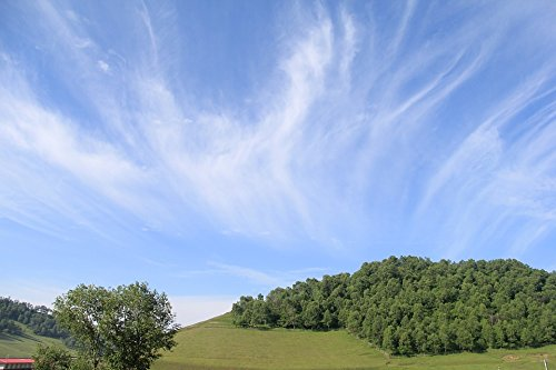 Home Comforts Acrylic Face Mounted Prints Air Meadows Cloud View Clear Sky White Cloud Day Print 18 x 24. Worry Free Wall Installation - Shadow Mount is Included.