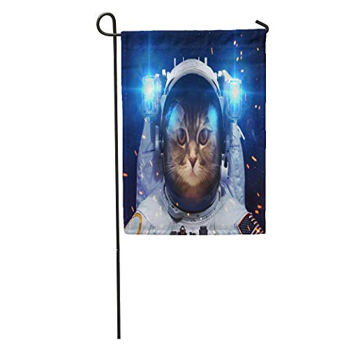 (Semtomn Garden Flag Spaceship Beautiful Cat in Outer Space of This Furnished Home Yard House Decor Barnner Outdoor Stand 12x18 Inches Flag)