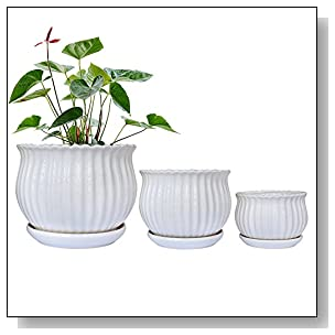 GeLive Set of 3 White Ceramic Flower Pots, Succulent Planters, Garden Plant Container with Saucers, Small to Large Size, Elegant, Great for Home Decor