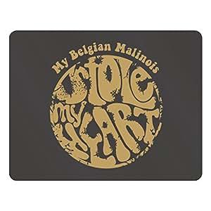 Teeburon My Belgian Malinois stole my heart Plastic Acrylic