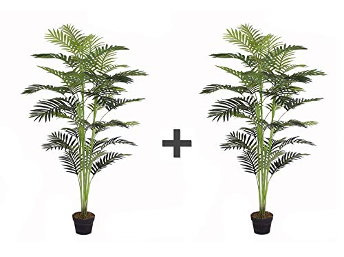 (AMERIQUE Pair Gorgeous 5.5' Tropical Areca Palm Trees Artificial Silk Plant with UV Protection, with Nursery Pots, Feel Real Technology, Super Quality, Feet Each, Green)