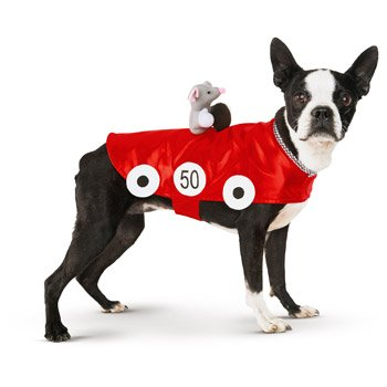 Petco Halloween Racecar Dog Costume, Large - Petco Halloween Costumes