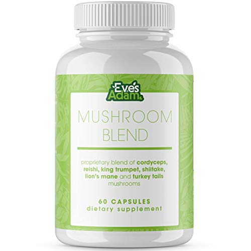6 Mushroom Powder Blend Supplement – 1000mg Capsules with Cordyceps, Lions Mane, Reishi, Turkey Tail, Shiitake, and King Trumpet – Support Your Overall Health and Immune System (60 Count)
