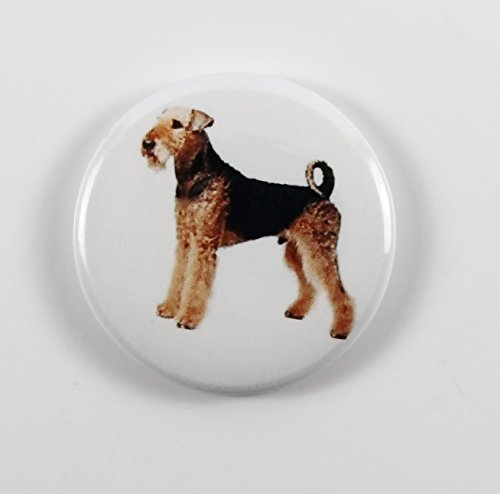 Airedale Terrier (3) Pin Back Button