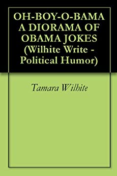 Writing a political book