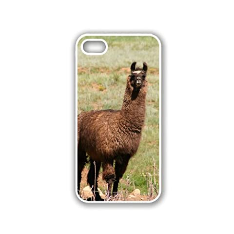 Llama (Brown) On Grass iPhone 5 White Case - For iPhone 5/5G White - Designer TPU Case Verizon AT&T (Ipod 5 Llama Case)