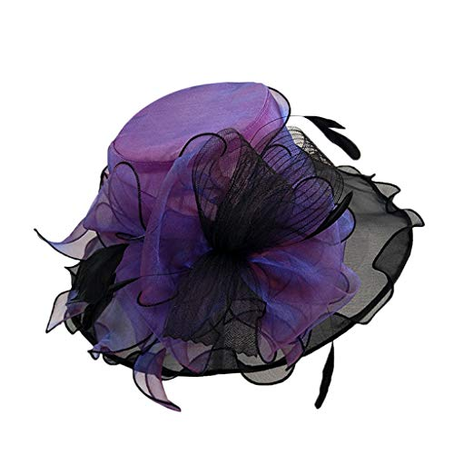 Price comparison product image Fascinator Hats for Women Girls Cocktail Tea Party Fancy Hats Bridal Kentucky Derby Headband Purple