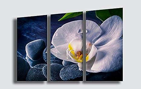 Stampe Moderne Cucina : Quadro moderno fiori arte orchidea zen benessere estetica stampa su