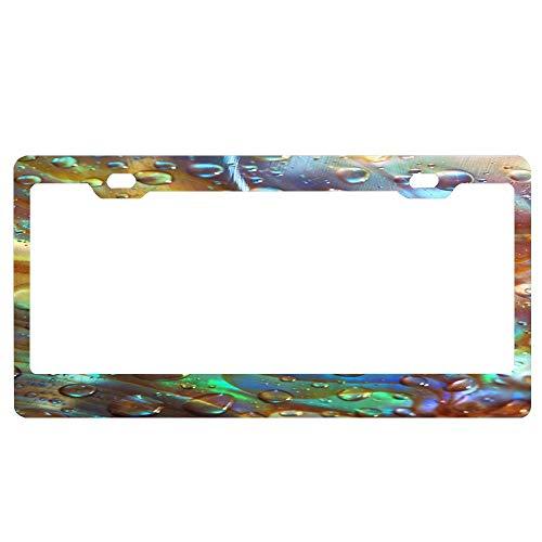 - GqutiyulUCOOL License Plate Frame for Women Men, Abalone Blue Custom License Plate Frames with Chrome Screw Caps - 2 Holes