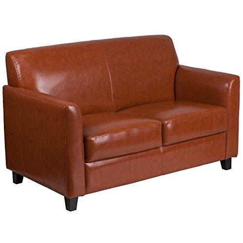 BSD National Supplies Benville Modern Cognac Leather Loveseat by BSD National Supplies