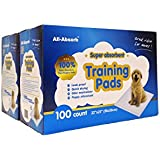 "All-Absorb 200 Count Bulk Packaging Training Pads, 22"" x 23"""
