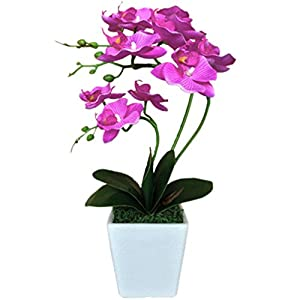 "YSZL 15"" Tall Artificial Silk Phalaenopsis Orchid Flower Plant Pot Arrangements 16"