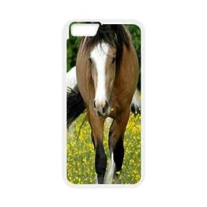 Horse 4 IPhone 6 Plus Cases, Luxury Case for Iphone 6 Plus 5.5 Cute Design Okaycosama - White
