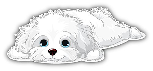 - Cute Havanese Puppy Art Decor Bumper Sticker 6'' x 3''