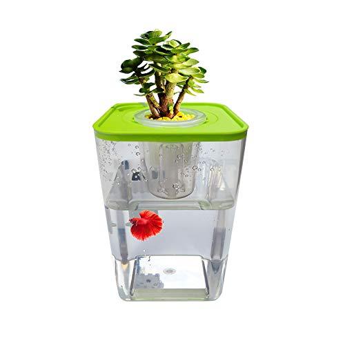 WAWLIVING Betta Fish Tank Desktop Mini Aquaponic Ecosystem Planter Water Garden Hydroponic Growing System