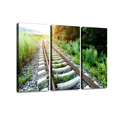 The Abandoned Rails was Overgrown with Weeds 3 Pieces Print On Canvas Wall Artwork Modern Photography Home Decor Unique Pattern Stretched and Framed 3 Piece