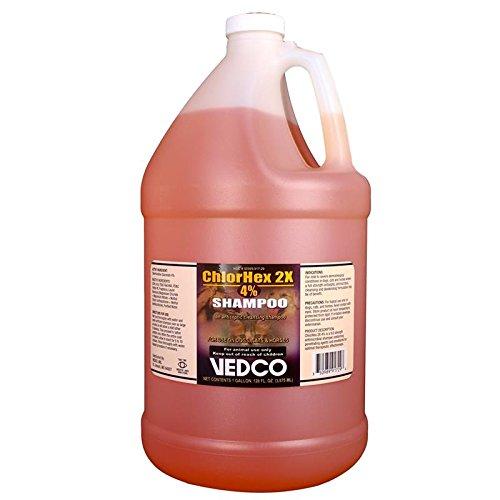 Vedco ChlorHex 2X 4% Shampoo, Gallon