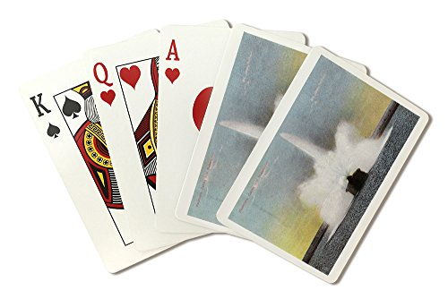 (Rochester, New York - Cobbs Hill Reservoir Fountain View (Playing Card Deck - 52 Card Poker Size with Jokers))