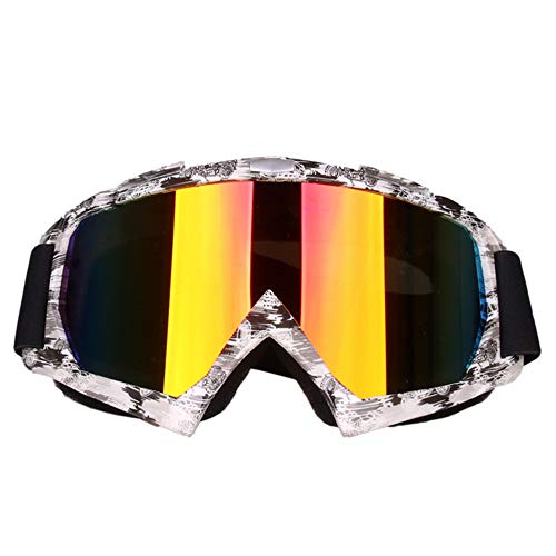 Zhouminli Cycling Glasses Outdoor Sports Cross-Country Glasses Accessories Motorcycle Riding Ski Goggles (Color : H)