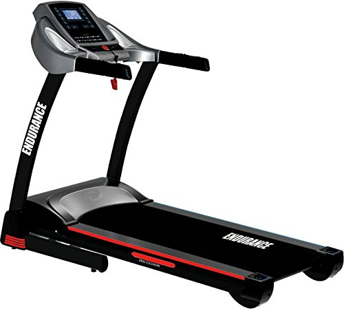Endurance Spirit Treadmill