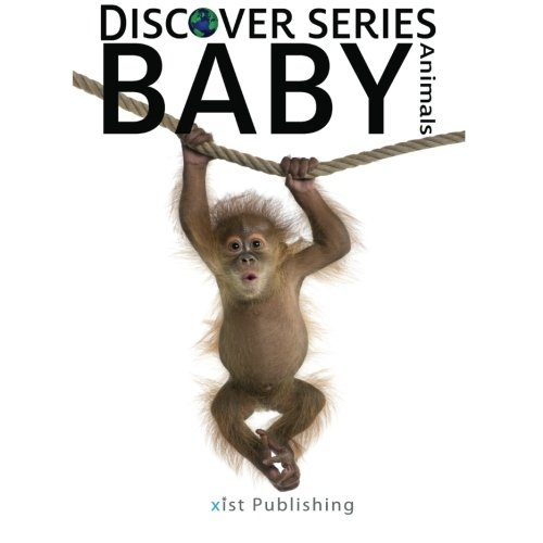 Download Baby Animals: Discover Series Picture Book for Children pdf epub
