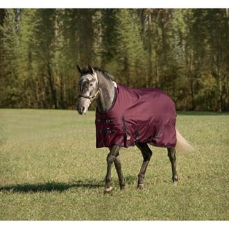 Rider's by Dover Saddlery Supreme Heavyweight Turnout Blanket - Burgundy/Black, 80 (Turnout Supreme International Sheet)