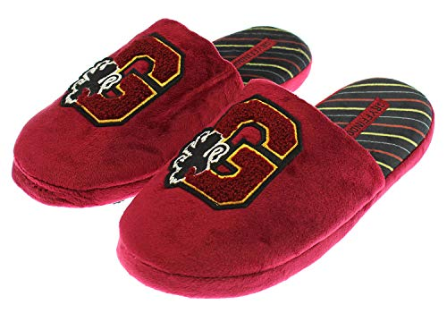 Harry Potter Hogwarts House Adult Gryffindor Slippers Shoes Fuzzy Soft (MD 7/8)